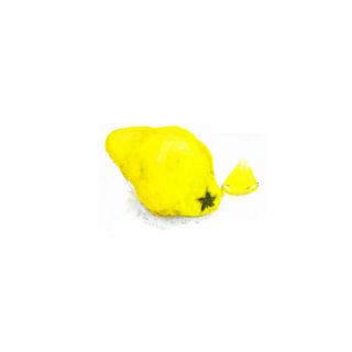 Xyligel Quitte-Zitrone